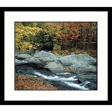 <strong>Great American Picture</strong> Georgia Brook Framed Photograph