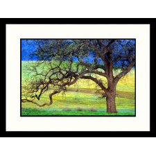 <strong>Great American Picture</strong> Oak Tree California Framed Photograph