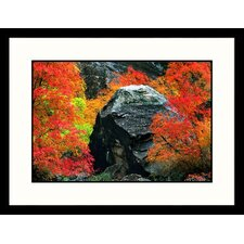 <strong>Great American Picture</strong> Peak Autumn Zion National Park, Utah Framed Photograph - Russell Burden