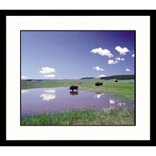 <strong>Great American Picture</strong> Montana Summer Framed Photograph