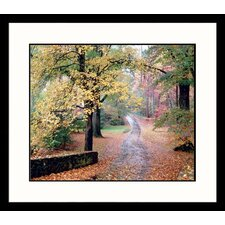 Landscapes 'Country Walk' by Mark Gibson Framed Photographic Print