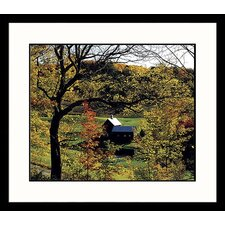 Landscapes 'Vermont Fall' by Mark Gibson Framed Photographic Print