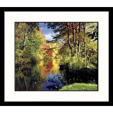 Landscapes 'Fall Spectrum' by Mark Gibson Framed Photographic Print