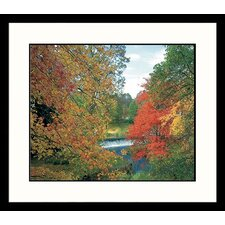 Landscapes Natick Falls, Massahcusetts Framed Photographic Print