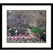 <strong>Great American Picture</strong> Tulips and Pool Framed Photograph