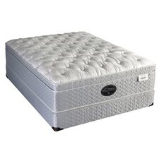 Back Supporter Four Seasons Jubilation Mattress