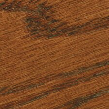 Varathane® Trial Size Red Oak Premium Stain Wood