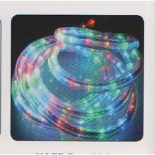 LED Rope Light (Set of 20)