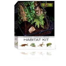 Exo Terra Rainforest Habitat Kit