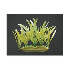 Marina Aquascaper Pigmychain Sword Plant Decoration