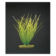 Marina Aquascaper Hairgrass Plant Decoration