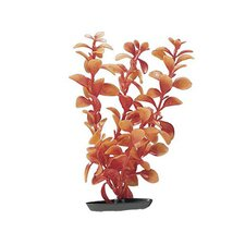 Marina Large Vibrascaper Ludwigia Plant in Red