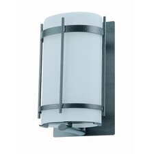 Vermillion 1 Light Outdoor Wall Sconce