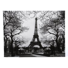 Eiffel Tower Park Photographic Print on Canvas