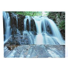 Waterfall Photographic Print on Canvas