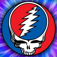Grateful Dead Steal Your Face Graphic Art on Canvas
