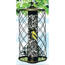 Colibri Preserve Seed Caged Bird Feeder