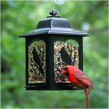 Birds and Berries Lantern Feeder