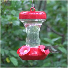 Top Fill Hummingbird Feeder