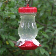 Glass Top Fill Hummingbird Feeder