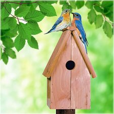 <strong>Perky Pet</strong> Bluebird Home