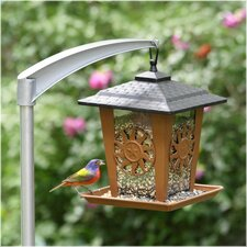 Sun & Star Lantern Decorative Bird Feeder