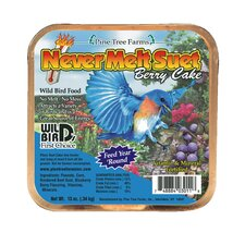 Berry Never Melt Suet Cake