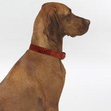 Triple Layer Bones Dog Collar