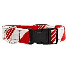 Triple Layer Peppermint Stripe Dog Collar