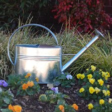 1-Gallon Galvanized Watering Can with Long Spout