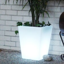 <strong>CompassCo</strong> Bon Décor Square Illuminated Pot Planter