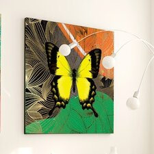 Metamorphosis Kindred Framed Graphic Art