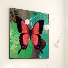 Metamorphosis Modern Butterfly #2 Framed Graphic Art