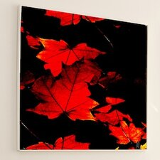 <strong>JORDAN CARLYLE</strong> Nature Autumn #2 Wall Art