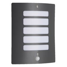 Todd 1 Light Wall/Ceiling Light