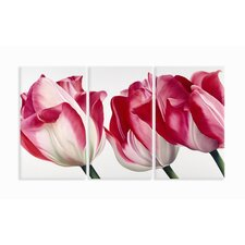 Home Décor Fresh Tulips Triptych Wall Art in Pink