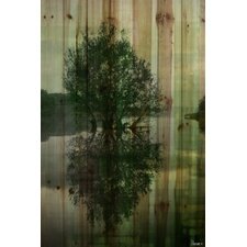 Reflective - Art Print on Natural Pine Wood