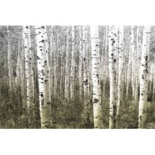 Aspen Highlands Print Art on Premium Canvas