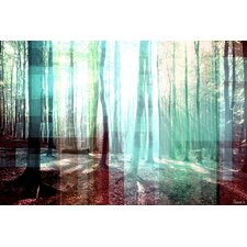 Tree Rays - Art Print on Premium Canvas