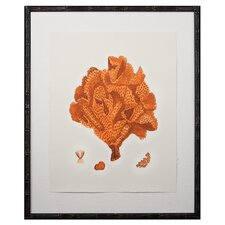 Tangerine Coral Giclee IV Framed Graphic Art