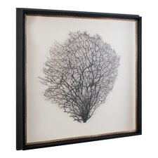 Natural Sea Fan Framed Graphic Art