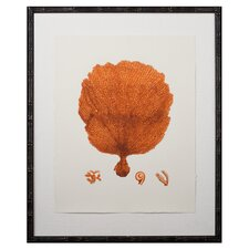 Tangerine Coral Giclee II Framed Graphic Art