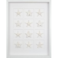 Twelve Starfish Graphic Art Shadow Box