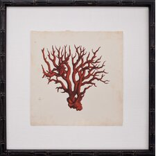 Mini Red Coral VI Framed Graphic Art