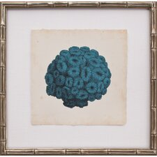 Mini Turquoise Coral I Framed Graphic Art