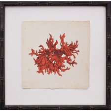 Mini Red Coral III Framed Graphic Art