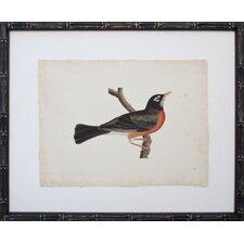 Vintage Bird III Framed Graphic Art
