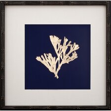 Gold Leaf Kelp on Navy Paper II Framed Graphic Art