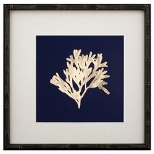 Gold Leaf Kelp on Navy Paper I Framed Graphic Art