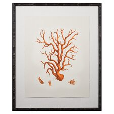 Tangerine Coral Giclee III Framed Graphic Art